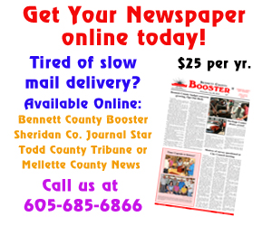 Online newspapers 7-13